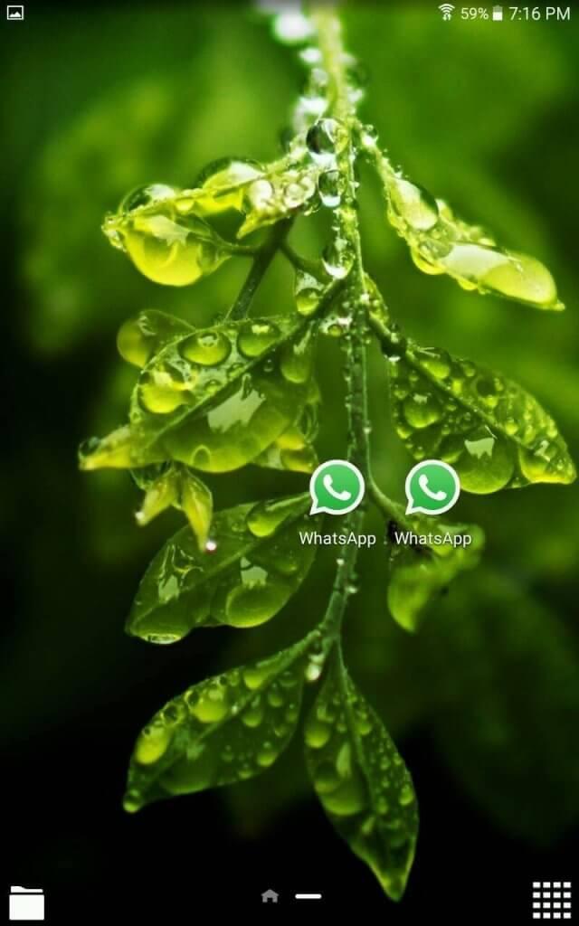 gbwhatsapp 5.60 apk download