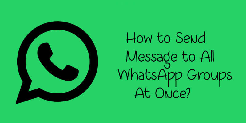 Image result for send to all whatsapp